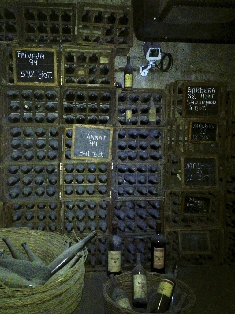 The cellar holding the ancient wines!